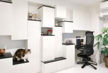 ペットに優しく収納力も高い壁面収納